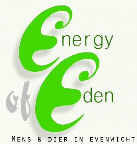 Energy of Eden Wevelgem