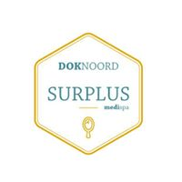 Surplus logo