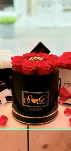 The One Roses Antwerpen
