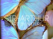 Sir-Arthur Antwerpen logo