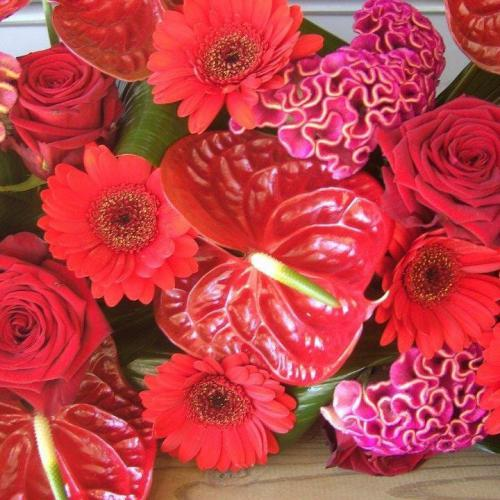 Bloemenzaak Fine Fleur Brugge