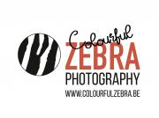 Colourful Zebra logo