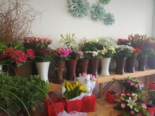 Anna's Flowers Antwerpen