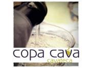 Copa Cava logo