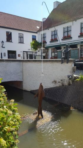 Exodus Brugge Brugge
