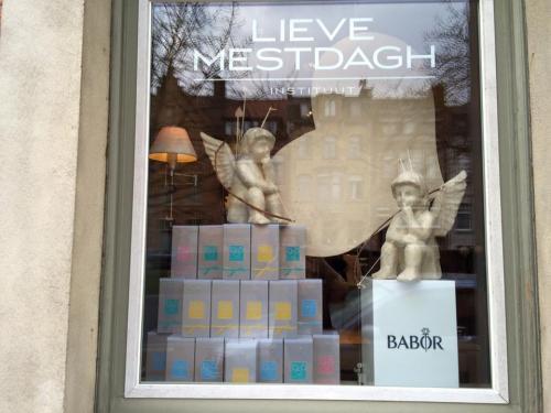 Instituut lieve mestdagh Brugge