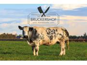 Hoeveslagerij Bruckershof logo